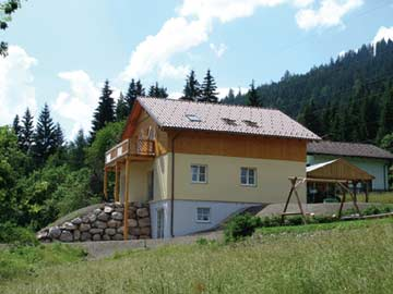 Ferienhaus Radstadt mit Sauna - Sommeransicht