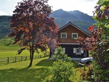 Ferienhaus Kleinarl mit Sauna (Hausansicht Sommer)