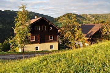 Ferienhaus Mühlbach am Hochköing (Hausansicht Sommer)