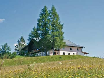 Ferienhaus Fageralm im Sommer