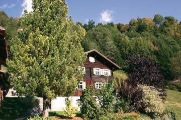 das Ferienhaus Silbertal im Sommer