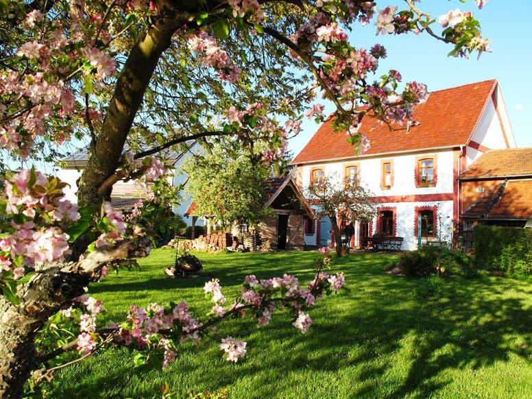 Denkmalgeschutztes Ferienhaus Direkt An Der Weser