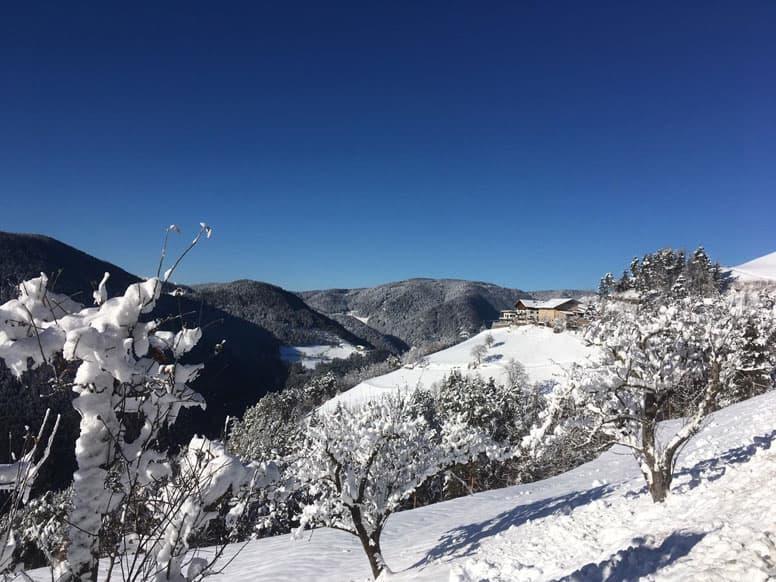 Ferienwohnung Rosengarten Latemar - Skiurlaub Südtirol auf dem Bauernhof