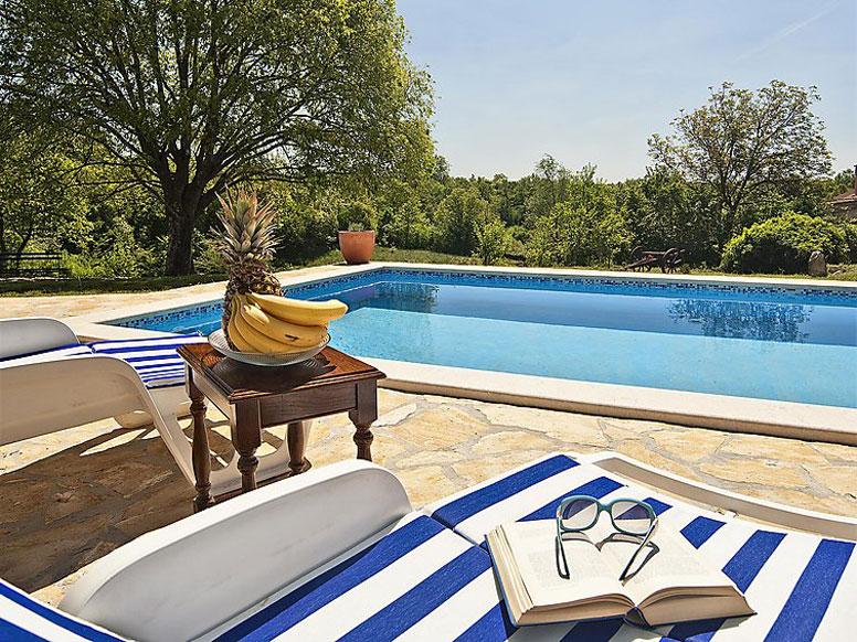 Ferienhaus Zminj mit Pool