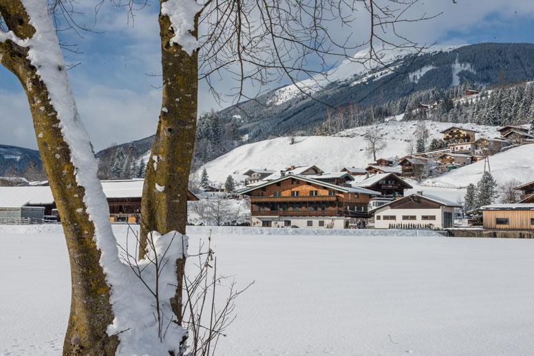 Ferienhaus Neukirchen am Großvenediger für Gruppen