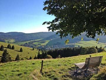 Ausflug durch den Schwarzwald