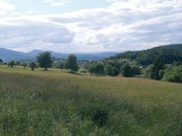 die Umgebung von Loffenau