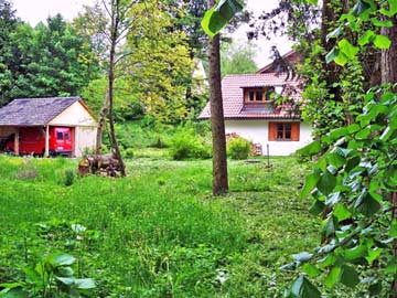Naturgarten am Haus