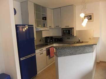 offene Küche im Seitenflügel