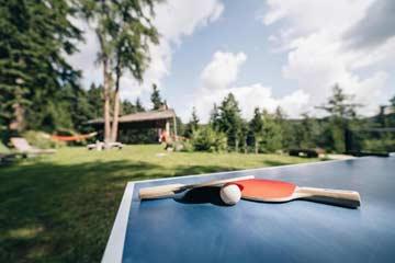 Schöner Sitzplatz beim Ferienhaus Meran 2000