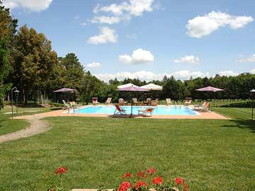 der Poolbereich mit Sonnenliegen