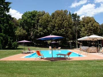 der Pool und das private Waldstück im Hintergrund