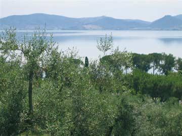 herrlicher Blick auf den Trasimenischen See