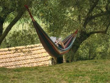 Hier lässt es sich herrlich inmitten von Olivenhainen entspannen