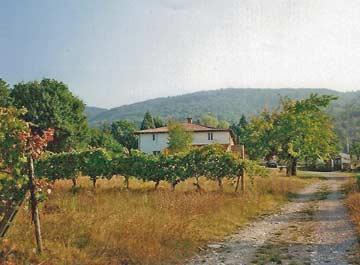 das Ferienhaus Lago Trasimeno umgeben von Weinbergen, Olivenhainen und Apfelplantagen