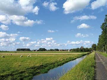 die landwirtschaftlich geprägte Umgebung