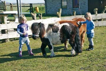 auch Familien mit Kindern sind willkommen im Gruppenhaus auf Texel