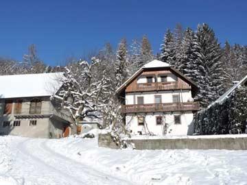 Ferienhaus mit hohem Wohnkomfort in Hermagor
