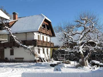 Ferienhaus Hermagor im Winter