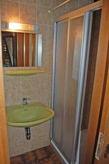 Badezimmer mit Dusche/WC im EG