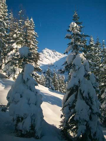 Rund um die traumhafte Skihütte Wagrain in bester Pistenlage (Kundenfoto)