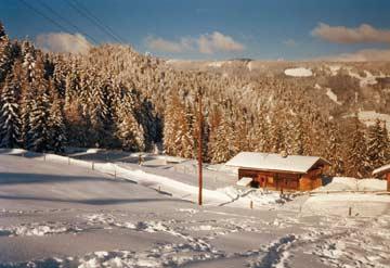 Berghütte Radstadt - traumhafte idyllische Lage abseits von Trubel und Verkehr! (ältere Aufnahme)