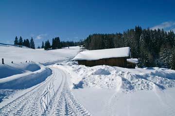 Rund um die Berghütte Radstadt Hütte im Hintergrund, verdeckt durch Schober)