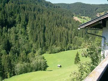 Herrliche Aussicht vom Ferienhaus Wagrain
