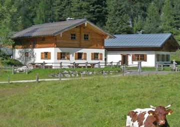 weitere Hausansicht Sommer mit kl. Nachbarhaus ÖSSL/I/13A