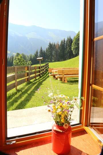Aussicht / Terrasse im Sommer