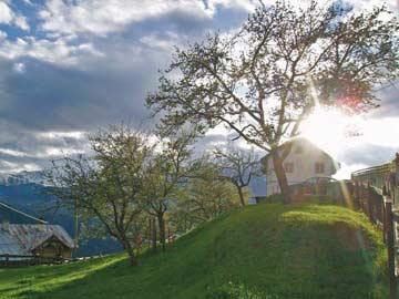 Ferienhaus Kaunertal im Sommer