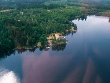 Blick auf die kleine Ferienanlage mit dem Ferienhaus Alljungen See