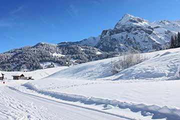bei Skilift, wenige Schritte vom Haus entfernt