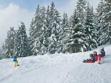 Rodelspaß direkt an der Skihütte Flims