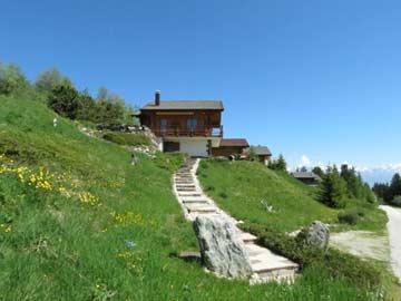 Treppenweg zum Chalet